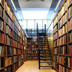 Библиотеки Ядрино